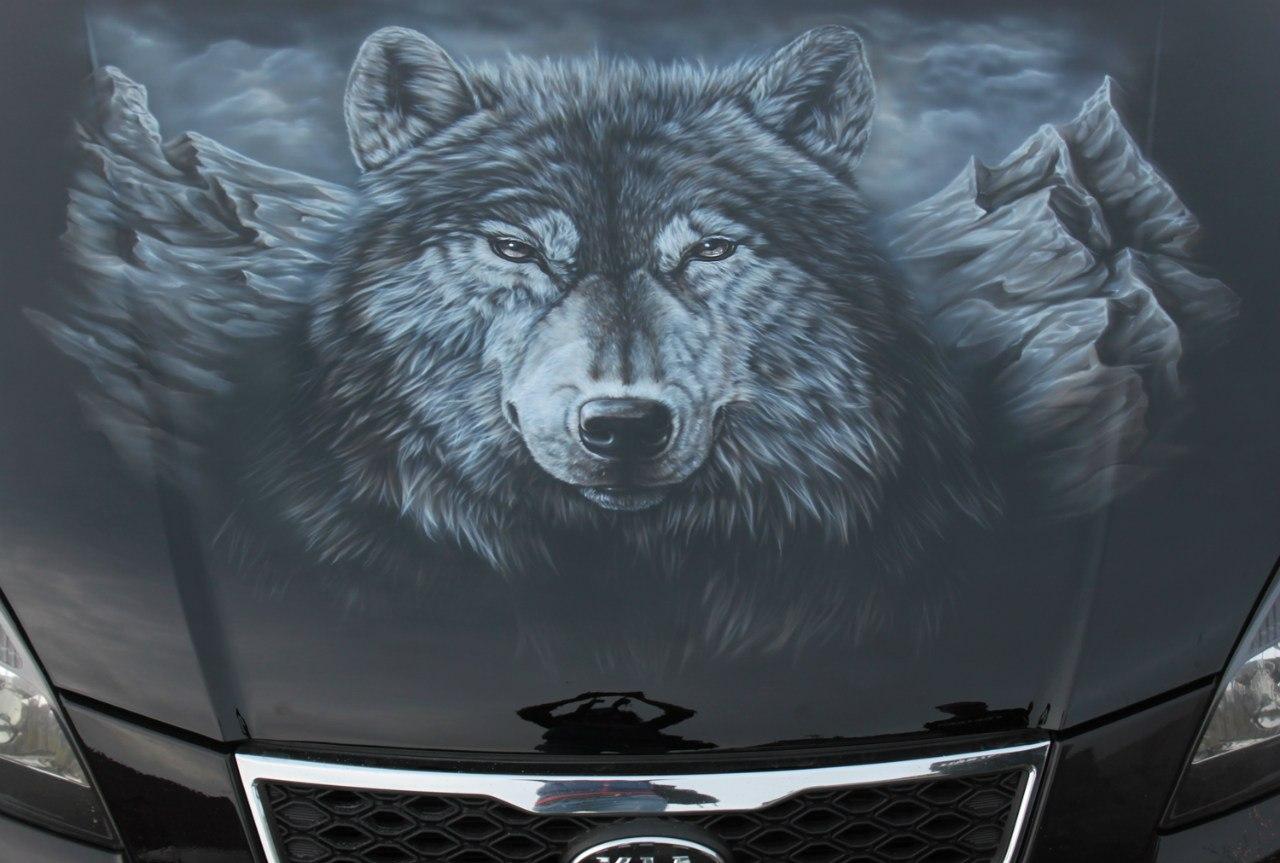 Волк на капоте Kia