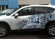 Леопард на Mazda