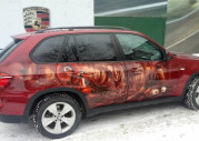 Белки на BMW
