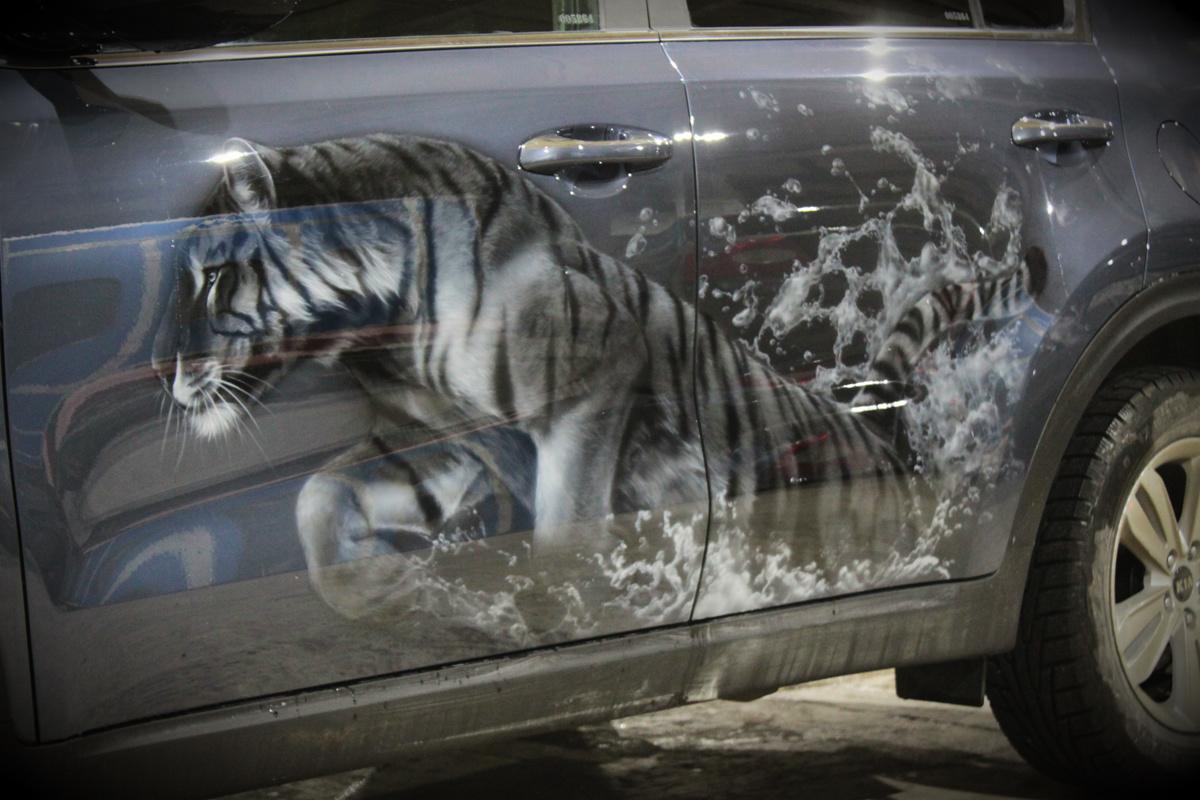Тигры на KIA 4 элемента